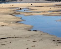 Vatten och sand.