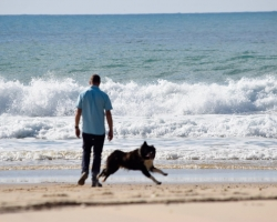 Man, hund, hav och sand. Ja, ni fattar va?