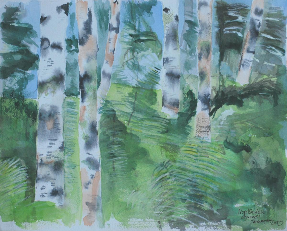 Norrländsk djungel. Akvarell, nära Vindeln